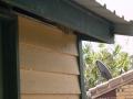 Issue: Termite nest