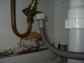 Issue: Plumbing Leak caused Termite infestation